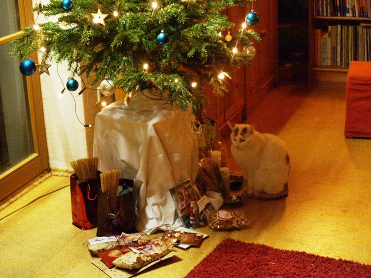 Kater Leo will am Weihnachtsfest auch teilhaben !