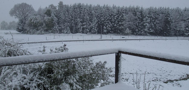 nasser schwerer Papp-Schnee soweit das Auge sehen kann