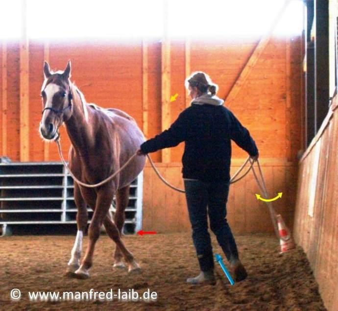 TGT Übung 18  Handwechsel mit Begrenzung, Schulterkontrolle, Gymnastizieren - Foto aus meinem Kurshandbuch © Manfred Laib