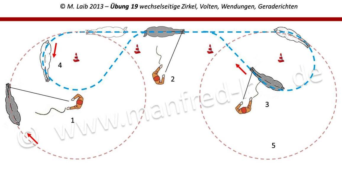 TGT Übung 19 wechselseitige Zirkel, Volten, Wendungen, Geraderichten - Grafik aus meinem Kurshandbuch © Manfred Laib