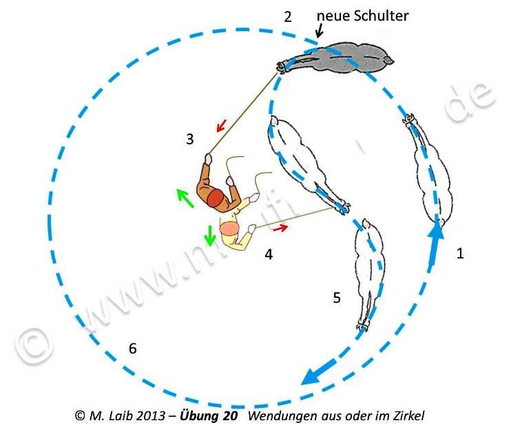 TGT Übung 20   Wendungen aus oder im Zirkel - Grafik aus meinem Kurshandbuch © Manfred Laib