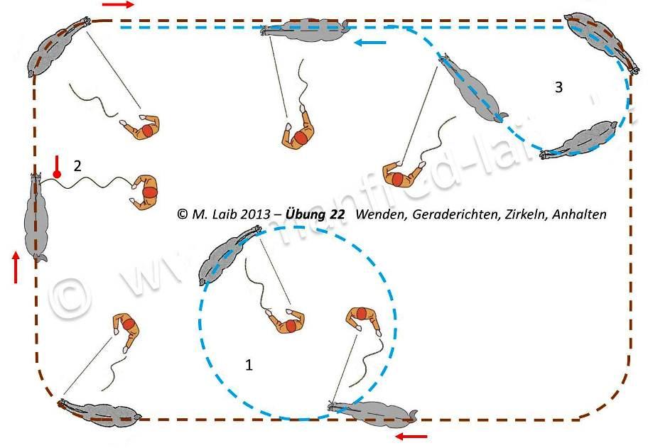 TGT Übung 22   Wenden, Geraderichten, Zirkeln, Anhalten - Grafik aus meinem Kurshandbuch © Manfred Laib