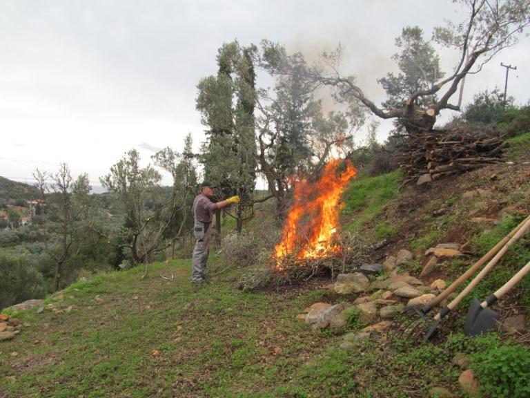 Ausasten, Brennholz aufstapeln, Rest verbrennen