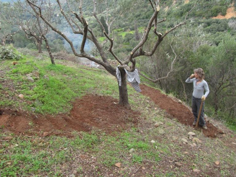 Silke am Buddeln, die nächste Treppe und weitere Wege entstehen