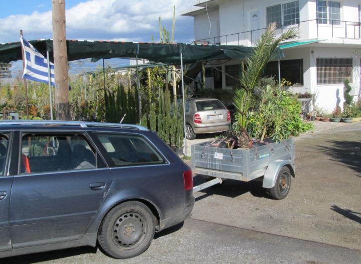 Dank unseres Freundes Panajotis konnten wir alle Pflanzen per Hänger zu unserem Grundstück transportieren.