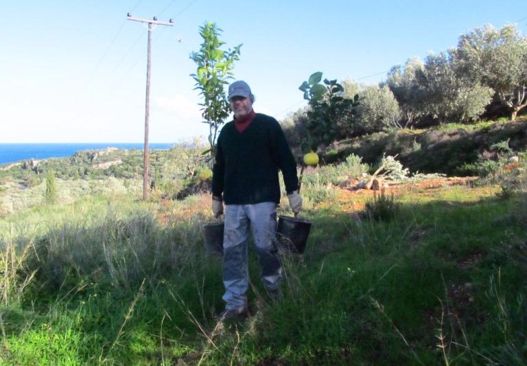 """Handarbeit und """"gut zu Fuß sein"""" war notwendig um alle Bäume auf dem großen Grundstück zu verteilen"""