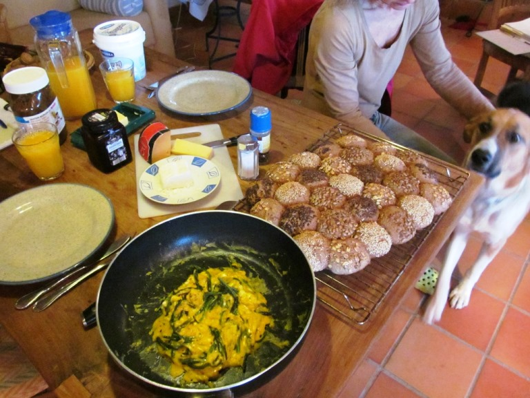 Sam macht große Augen und Silke kocht Omelette mit frischem wilden Spargel mit eigenem Brot dazu