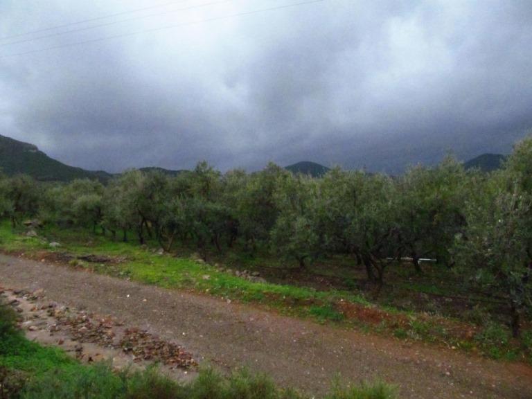 bedrohlich nahe und tief kommen ständig Gewitterwolken