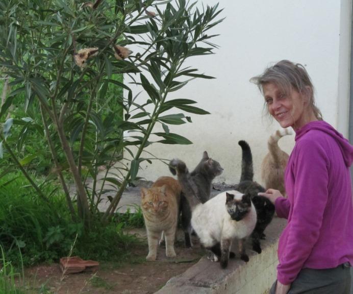 Wir sehen Euch bald wieder, die Katzen von unserem Nachbarn und Freund Panajotis