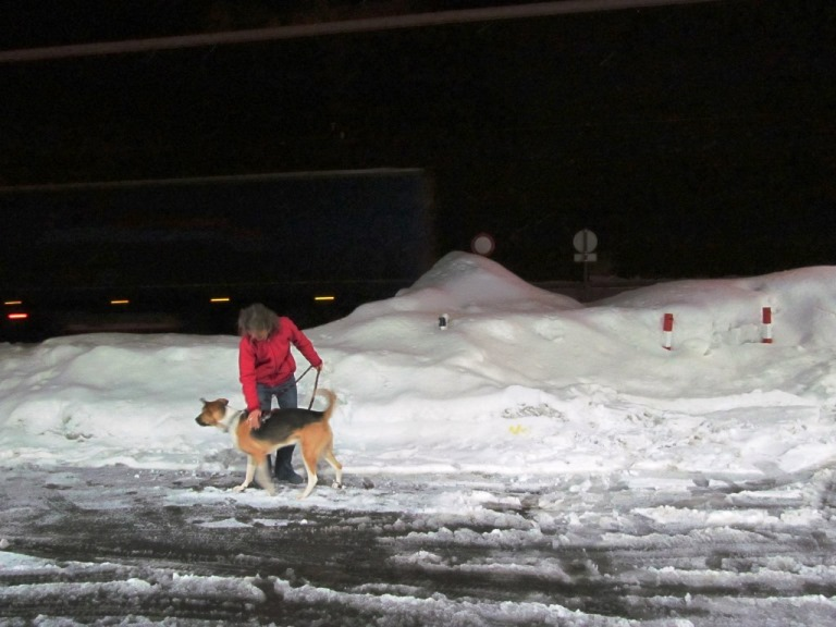 Meter hoch Schnee und Neuschnee bei 0,5°+ am Brenner
