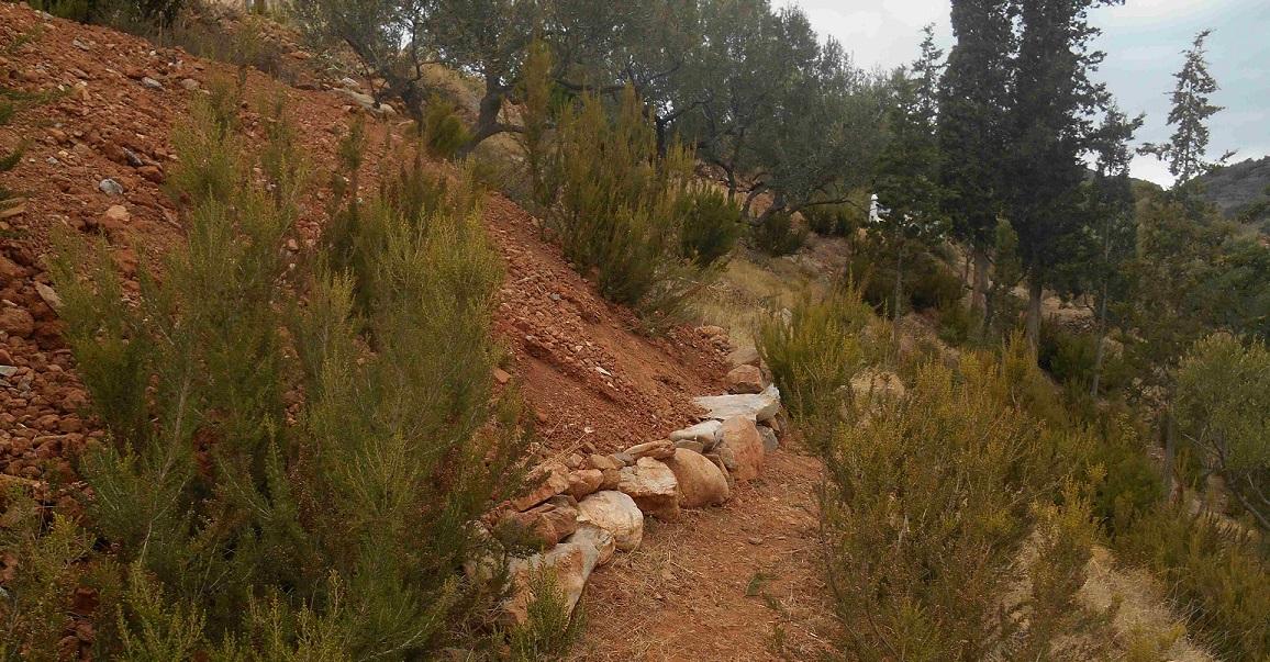 auch der neue Weg in den Zauberwald wurde fertig gestellt bevor der Regen kommt  © Foto: Lefteris Delastik