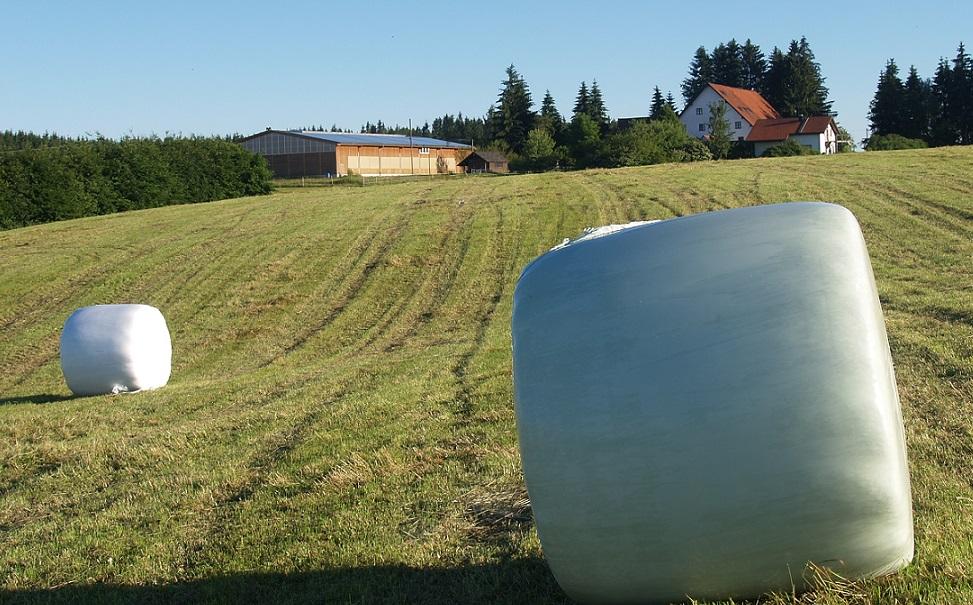 unser Anwesen Pfeifferhof im Allgäu. Erst Schnitt Heu Ernte 2016