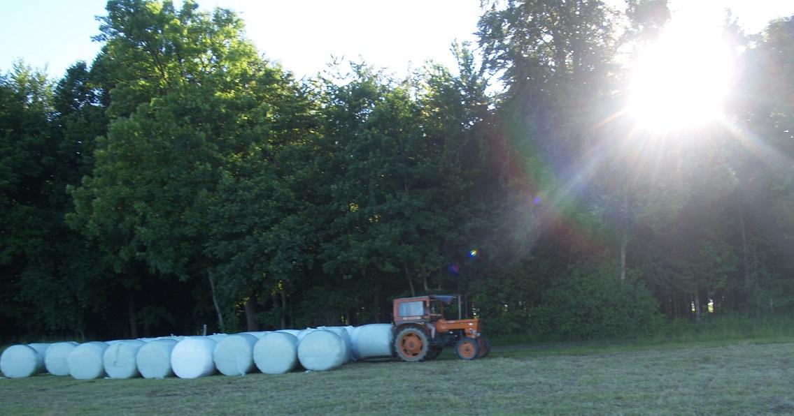 136 Ballen aus 100.000 m² Wiese geben 40 Tonnen Heu Ernte 2016