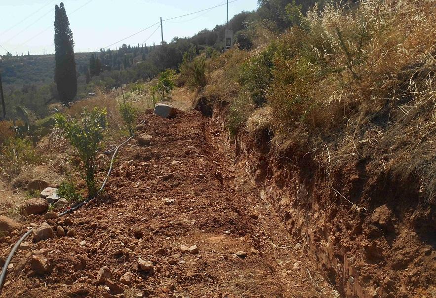 der Graben für das Fundament unserer 14 mtr langen Mauer wurde schon im Juni gebaggert © Foto Lefteris Delastik