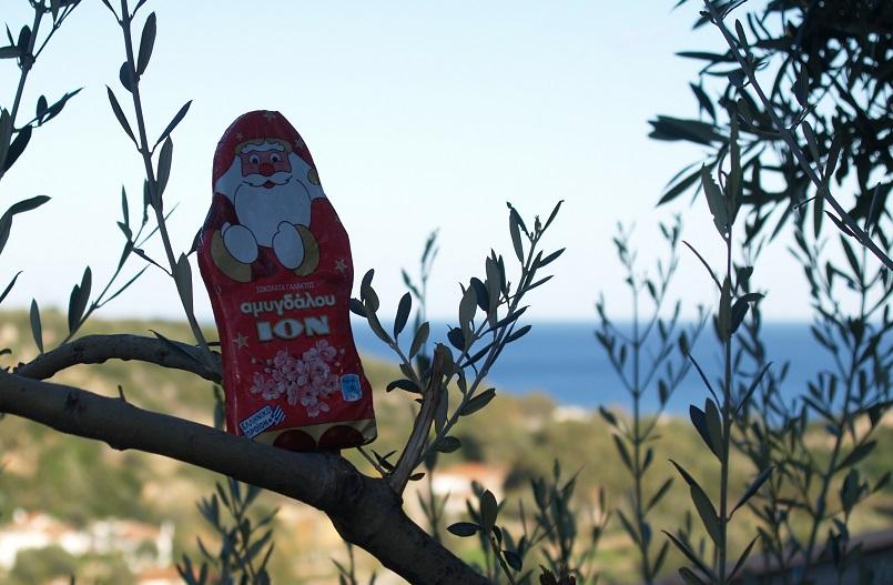 unser Nikolaus sitzt am 06. Dezember 2014 auf dem Olivenbaum