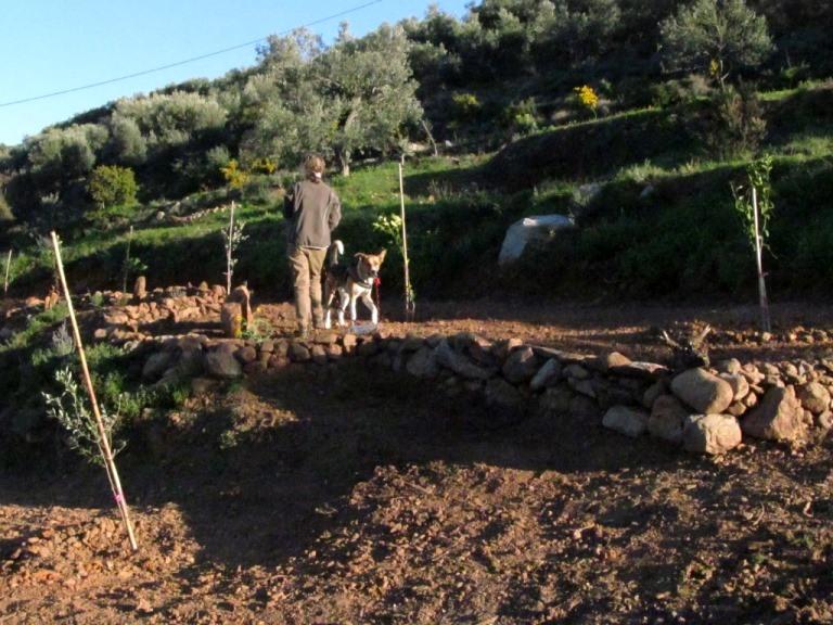 Anschluss der ersten und zweiten Terrasse, die ersten Blumen sind gepflanzt und werden per Hand gewässert