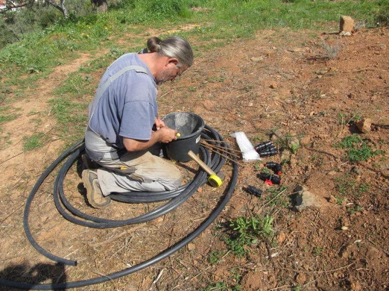 die Bewässerung für über 50 Pflanzen und Bäume wird vorbereitet