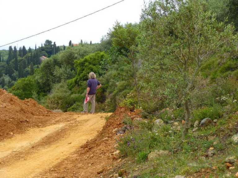 die neue Zufahrt zum Grundstück und der erste Besucher Wolfgang (Foto: Christa)