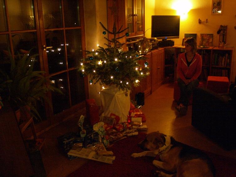 unser kleiner Christbaum am Pfeifferhof