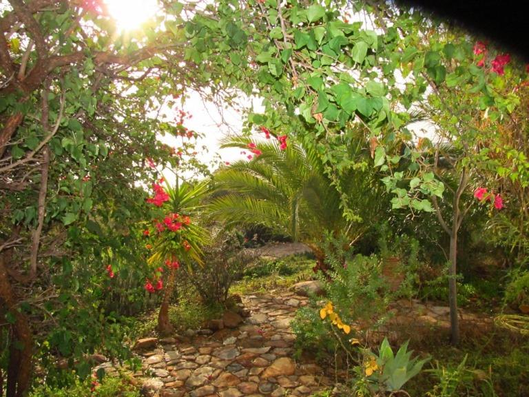was für ein Blick von der Terasse in den Garten im Dezember !!!