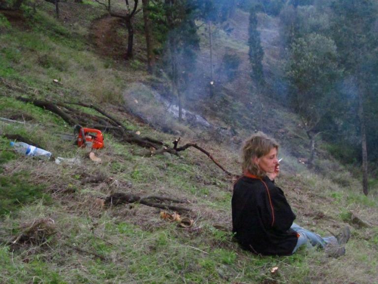 Nachlese: Rauch im Zauberwald