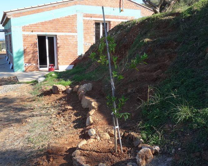weitere Treppen entstehen und Bäume werden gepflanzt