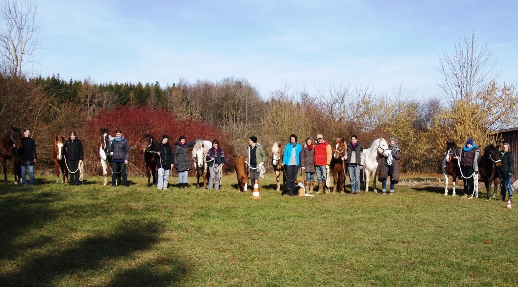 Die Gruppe der 11 Reittherapeuten des IPTh mit Ihren Pferden und Ausbildern am Pfeifferhof in unserer Reithalle