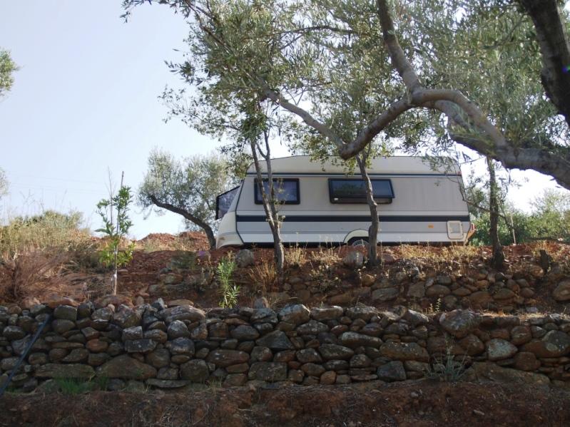 mitten in den Oliven Terrassen geniessen wir momentan unsere Zeit