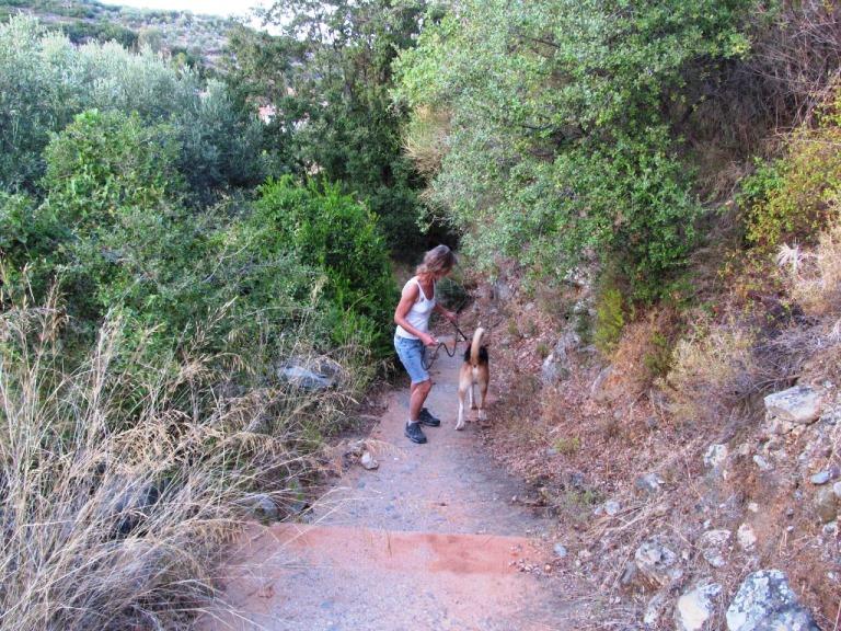 Der Hund Sam bringt uns auf ganz neue Wege (Weg vom Grundstück Kadowlos ins Dörfchen Nomia)