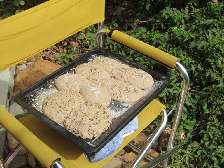 erster Versuch - das Nomia Brot beim gehen, etwas zu feucht aber ....