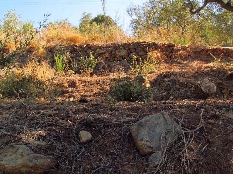 Kostprobe der verschiedenen Terrassen und Gemäuer im uralten gut erhaltenen Oliven Garten