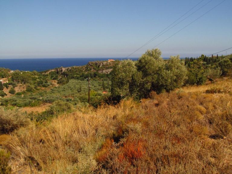 Blick von der zukünftigen Terrasse des SPITI KADOWLOS auf das 1200 mtr entfernte Meer