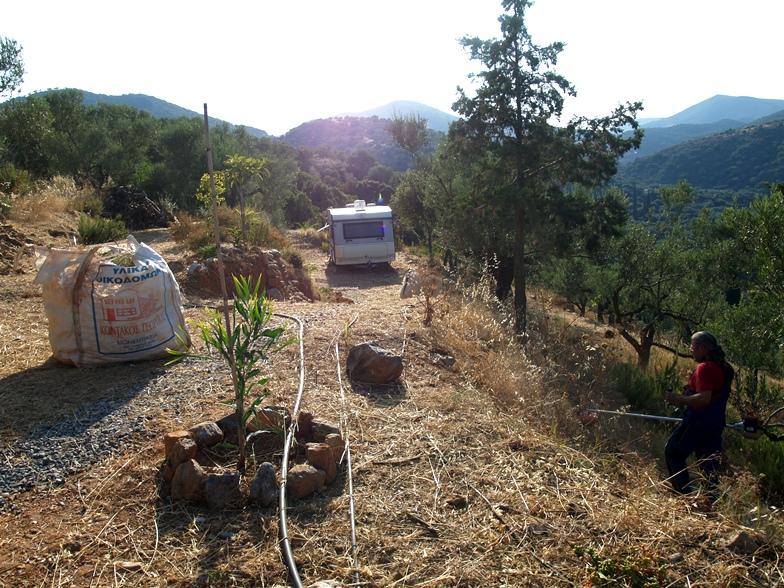 die Terrassen beim Camper sind fertig, das gemähte (Un-) Kraut wird in Säcken weg getragen und kommenden Winter verbrannt