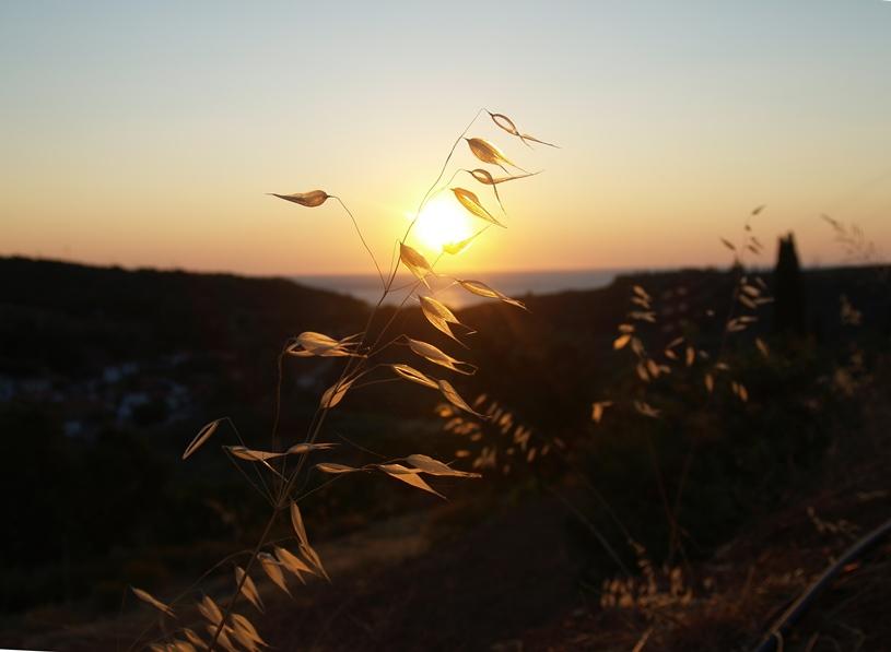 zu jeder Tageszeit, einzigartiges Panorama und wechselnde Stimmung der Natur