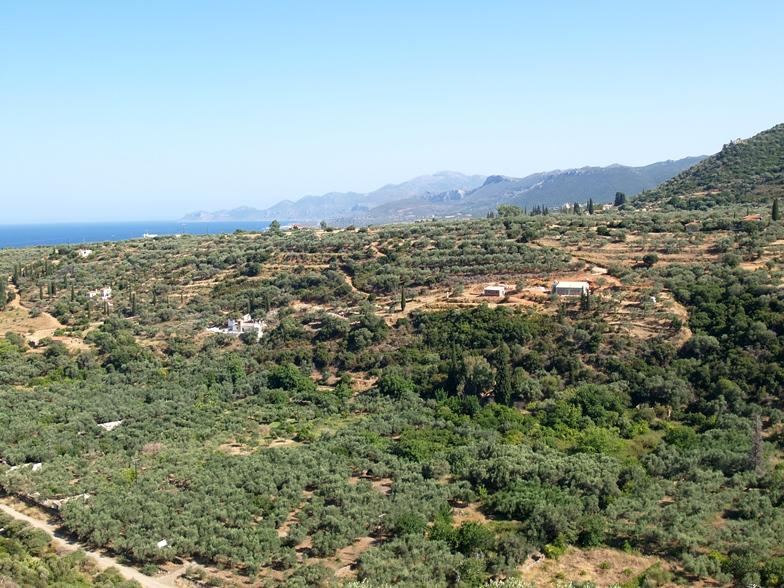 Blick auf unser Grundstück und die Umgebung - die Brände waren auf den Bergketten die man hinten sehen kann