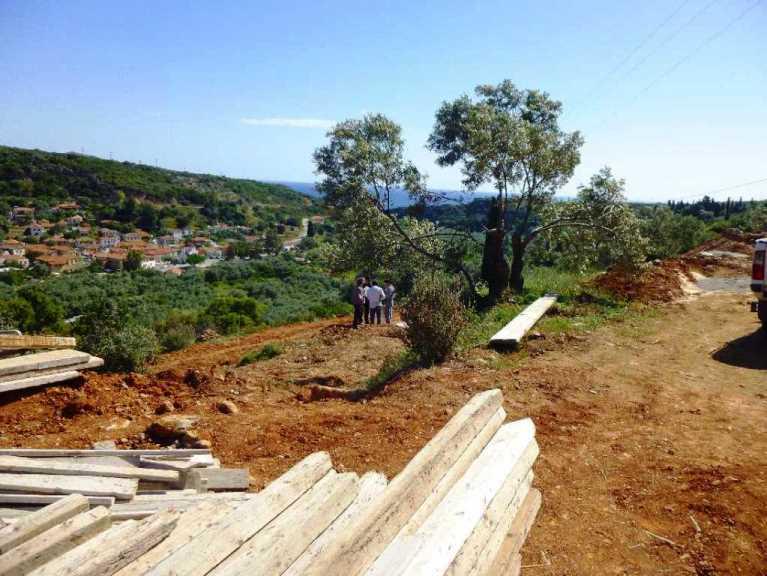 Blick vom späteren Hauseingang zu einem unserer Olivenbäumen und dem Meer (Foto: Christa)
