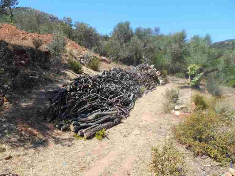 das gesamte Brennholz der Südterrassen wurde nun auf einer Terrasse (5) hinter dem Haus zusammen getragen