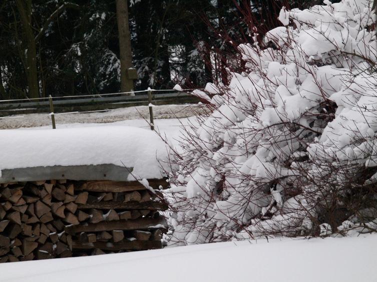 Pfeifferhof Wohnhaus Garten; zum Jahresende 2014 hat uns der Winter mit Schnee und Frost voll im Griff