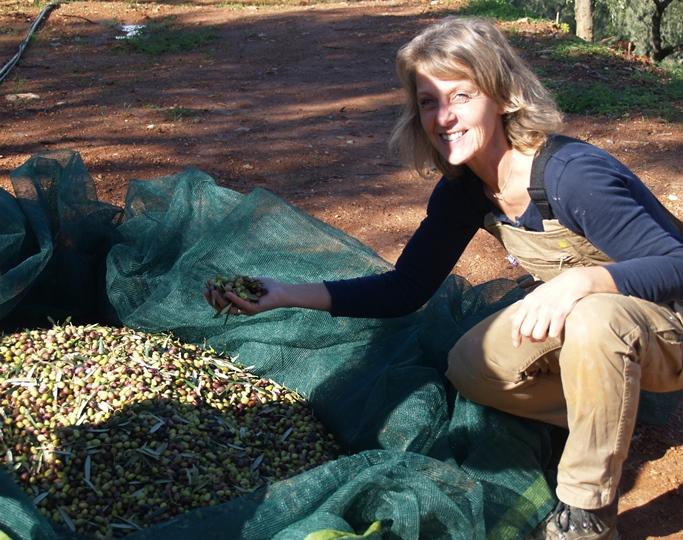 fürs erste Jahr bei neu geschnittenen Bäumen sind wir sehr zufrieden mit der Ernte