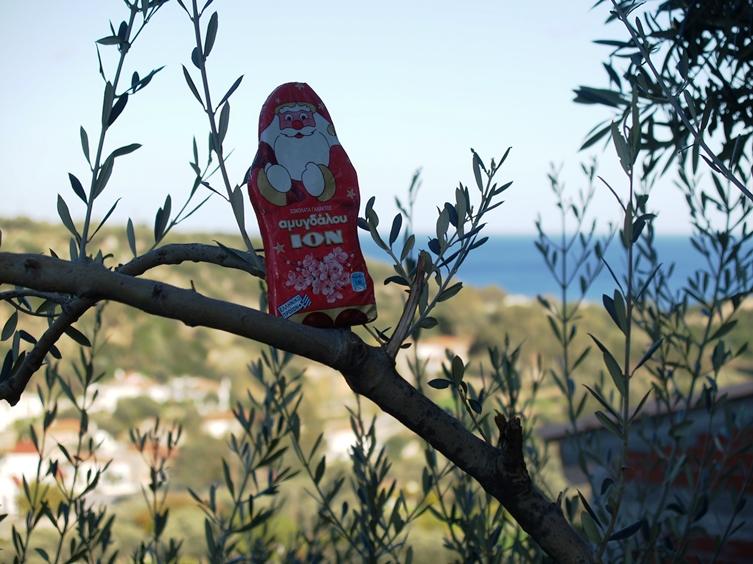 der Mandel Schokolade Nikolaus auf dem Olivenbaum
