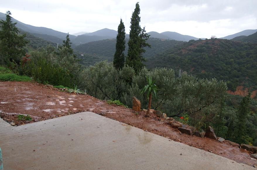 Terrasse soweit angelegt und mit Bepflanzung begonnen. Der Regen tut dazu gut