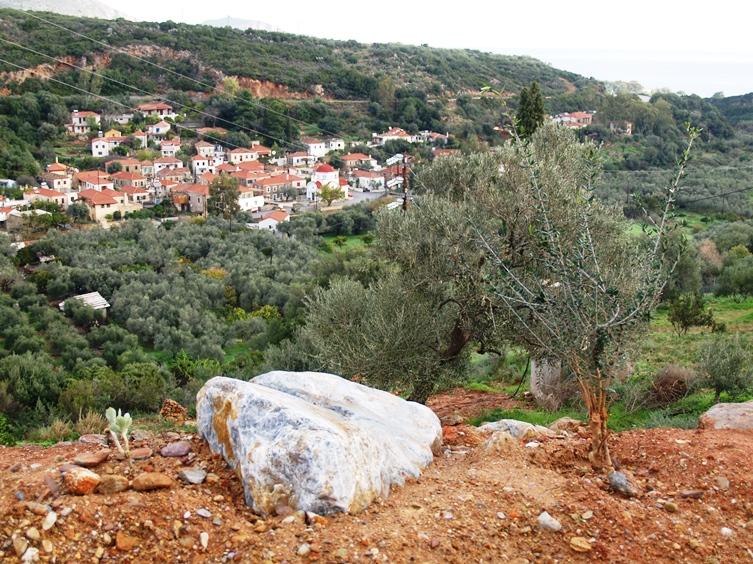Natursteine und neue Pflanzen