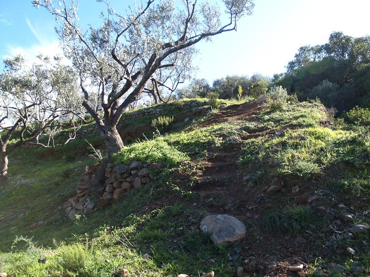 weitere Treppen entstehen um weitere Terrassen besser begehen zu können