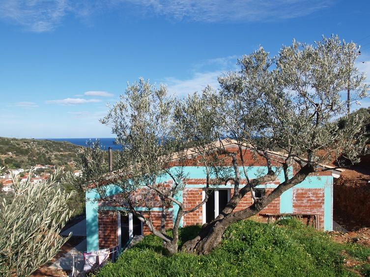 dieser Olivenbaum ist der Besondere auf dem Silke viele Stunden saß bevor wir das Grundstück gekauft haben