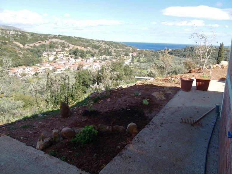 weitere Beete, weitere Pflanzen diese Terrasse wird unser Lieblingsplatz