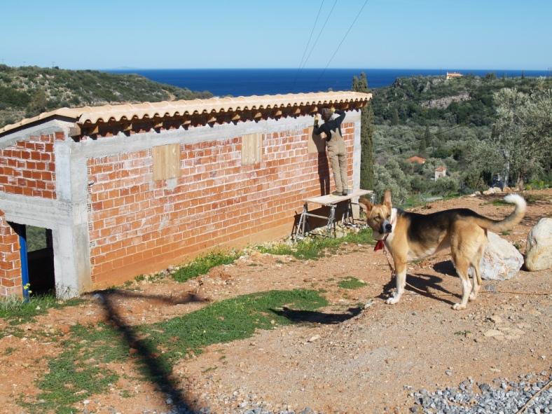 Holzschutz am kleinen Haus