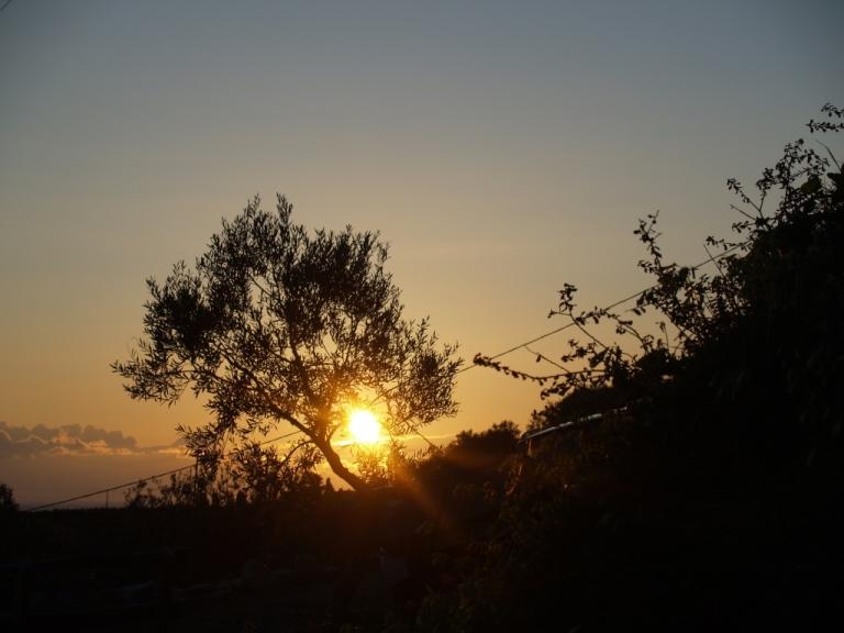 Sonnenaufgang 6:33 h OEZ in Nomia