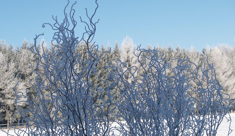 Eiszeit ~ -13°C - wenn der Nebel sich auflöst