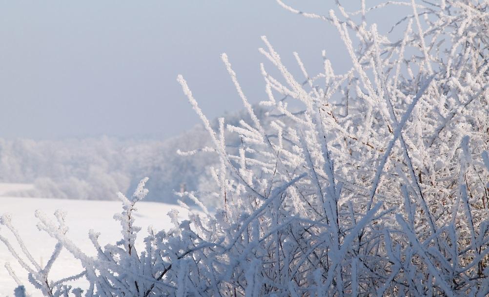 Eiszeit ~ -15°C - wenn die Luft gefriert